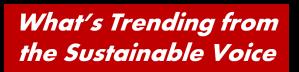 LANDsds Whats Trending