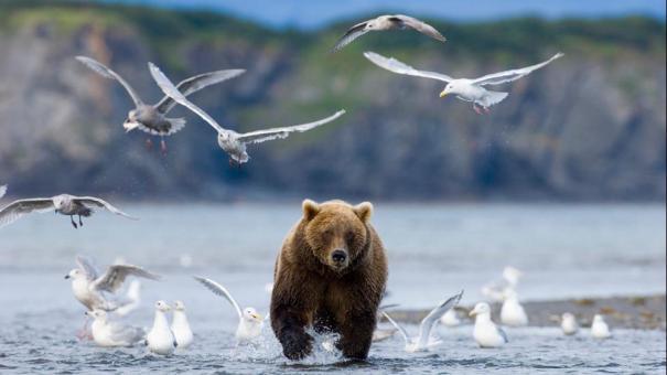 001_TWC_Alaska